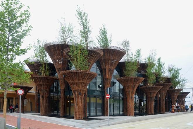Nhà tre với thiết kế có thể trồng cây xanh trên mái. Nguồn: Design Boom